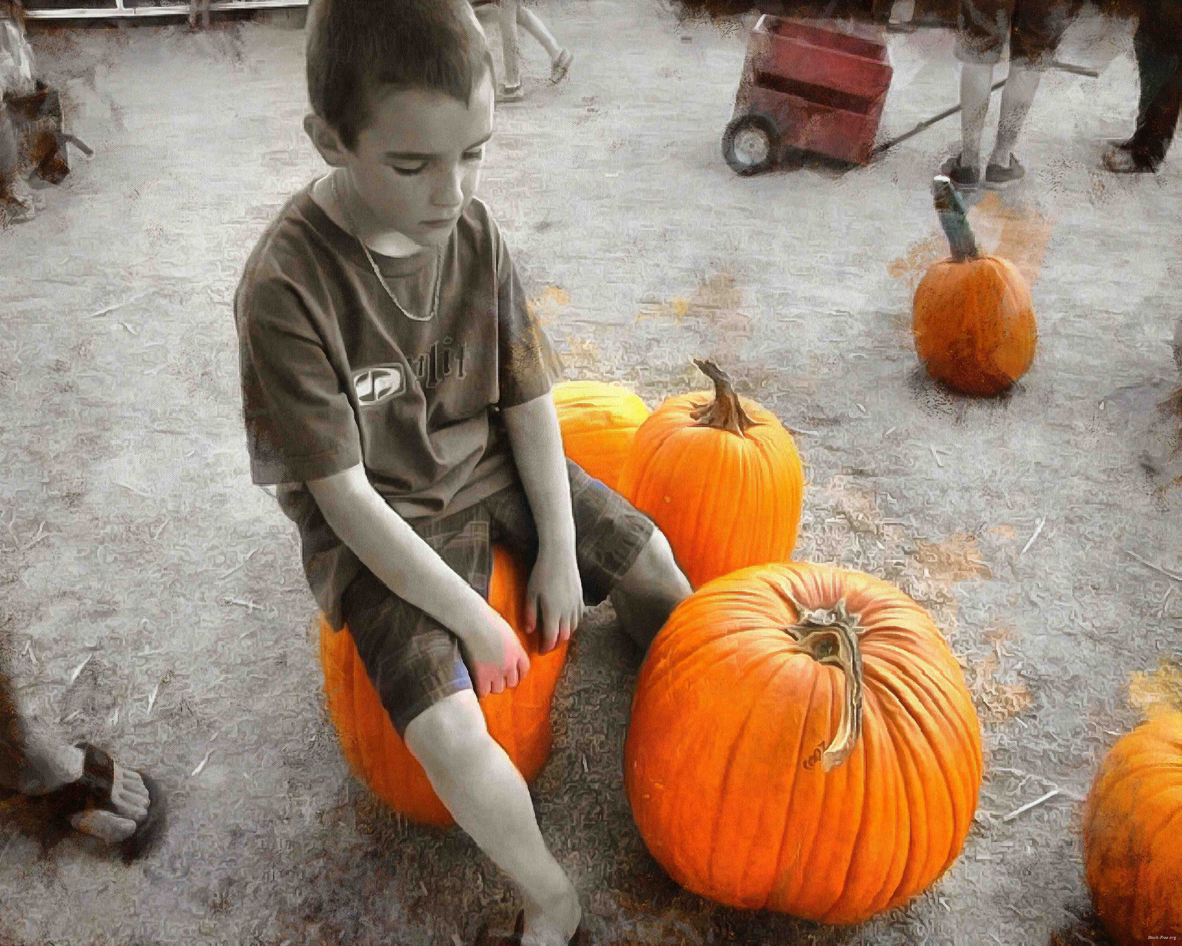 boy, kids, pumpkin, holiday, flame, candle, smile, candle, horror - halloween, holiday, free images, public domain images, free stock images, download images, free pictures<br>