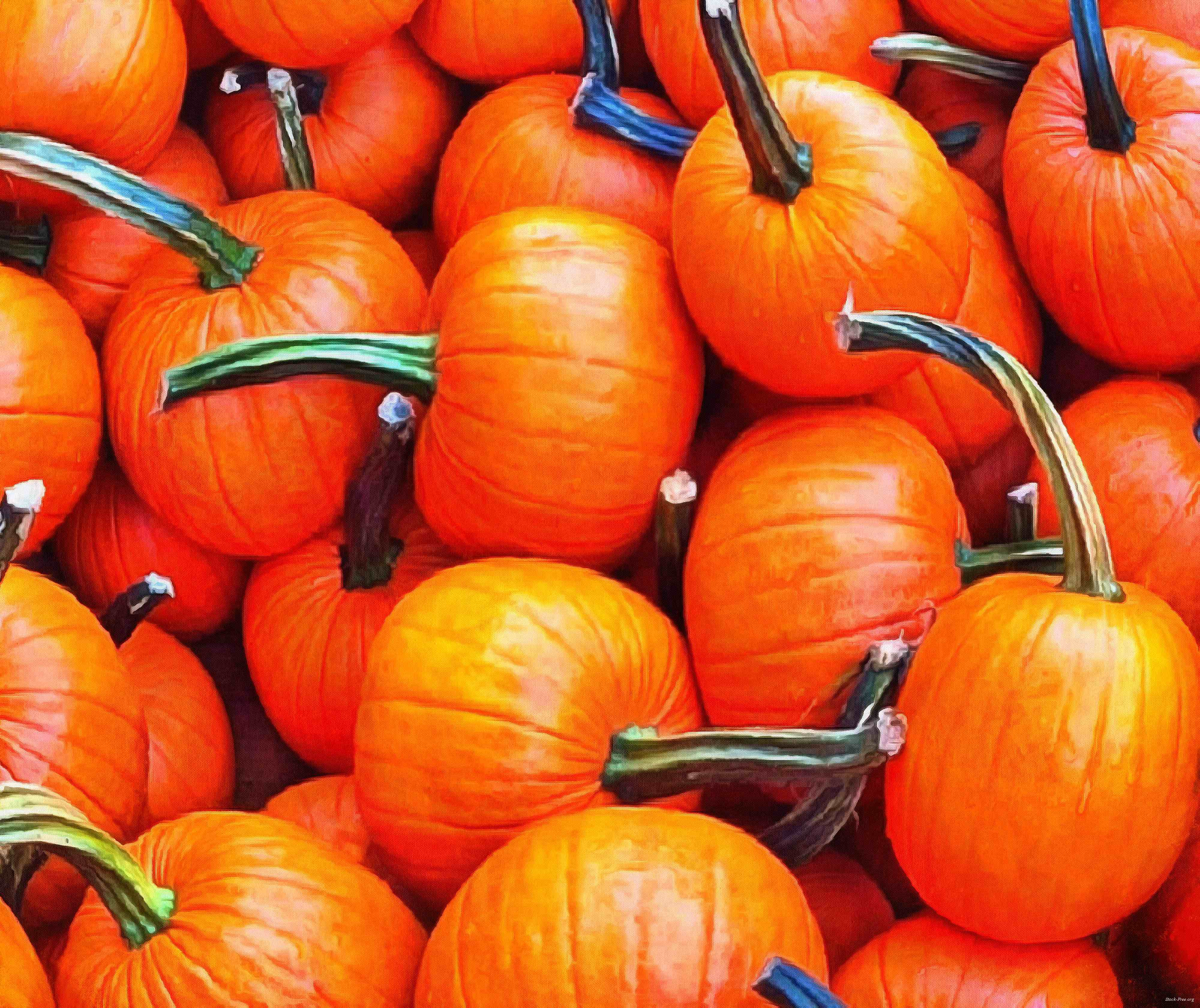 pumpkin, holiday, head, smile, vegetables, fun, - halloween, holiday, free images, public domain images, free stock images, download images, free pictures