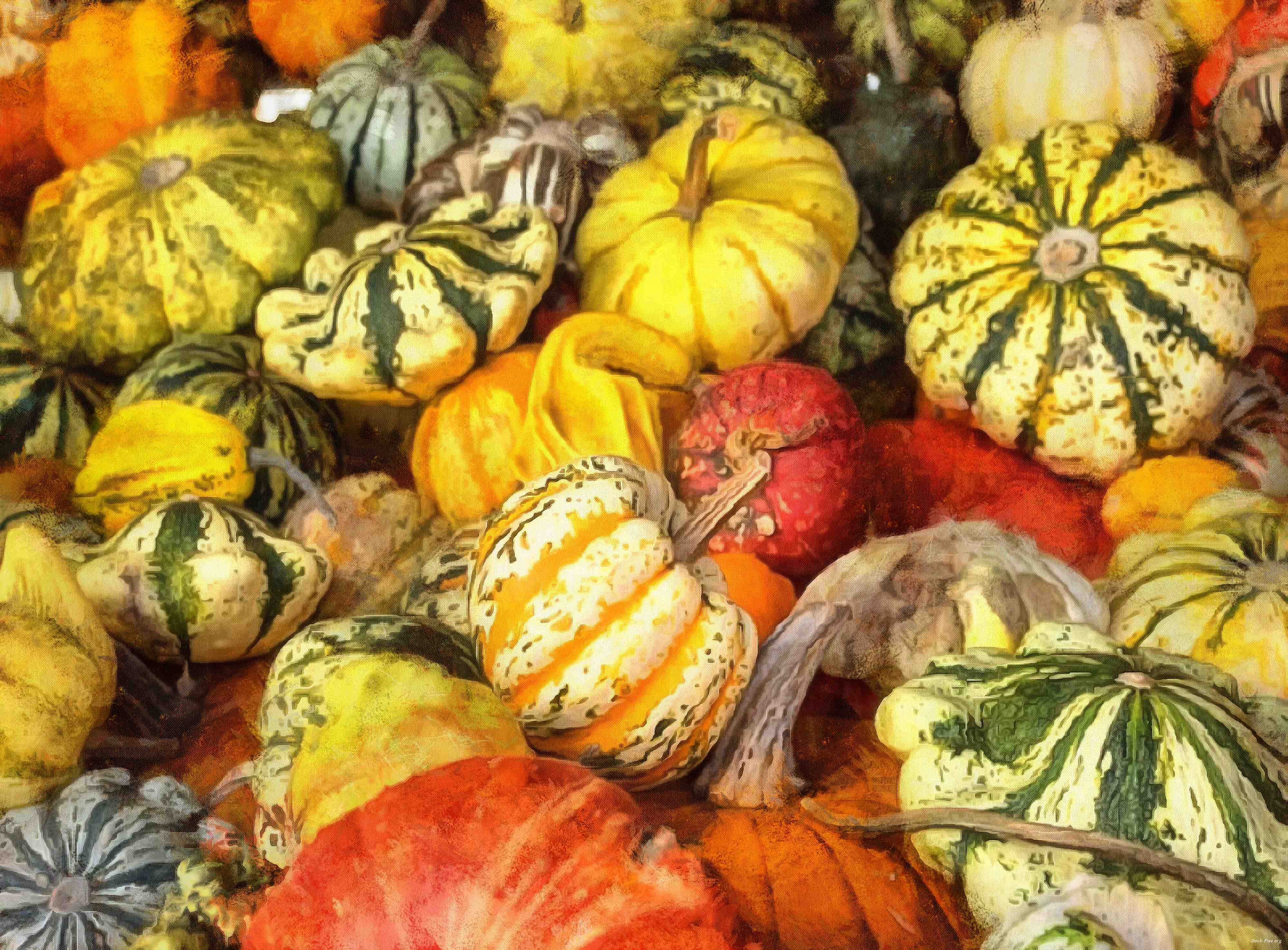 pumpkin, holiday, lots of pumpkins, garden, spooky, trick or treet, halloween -  stock free photos, public domain images, download free images, free stock images, public domain