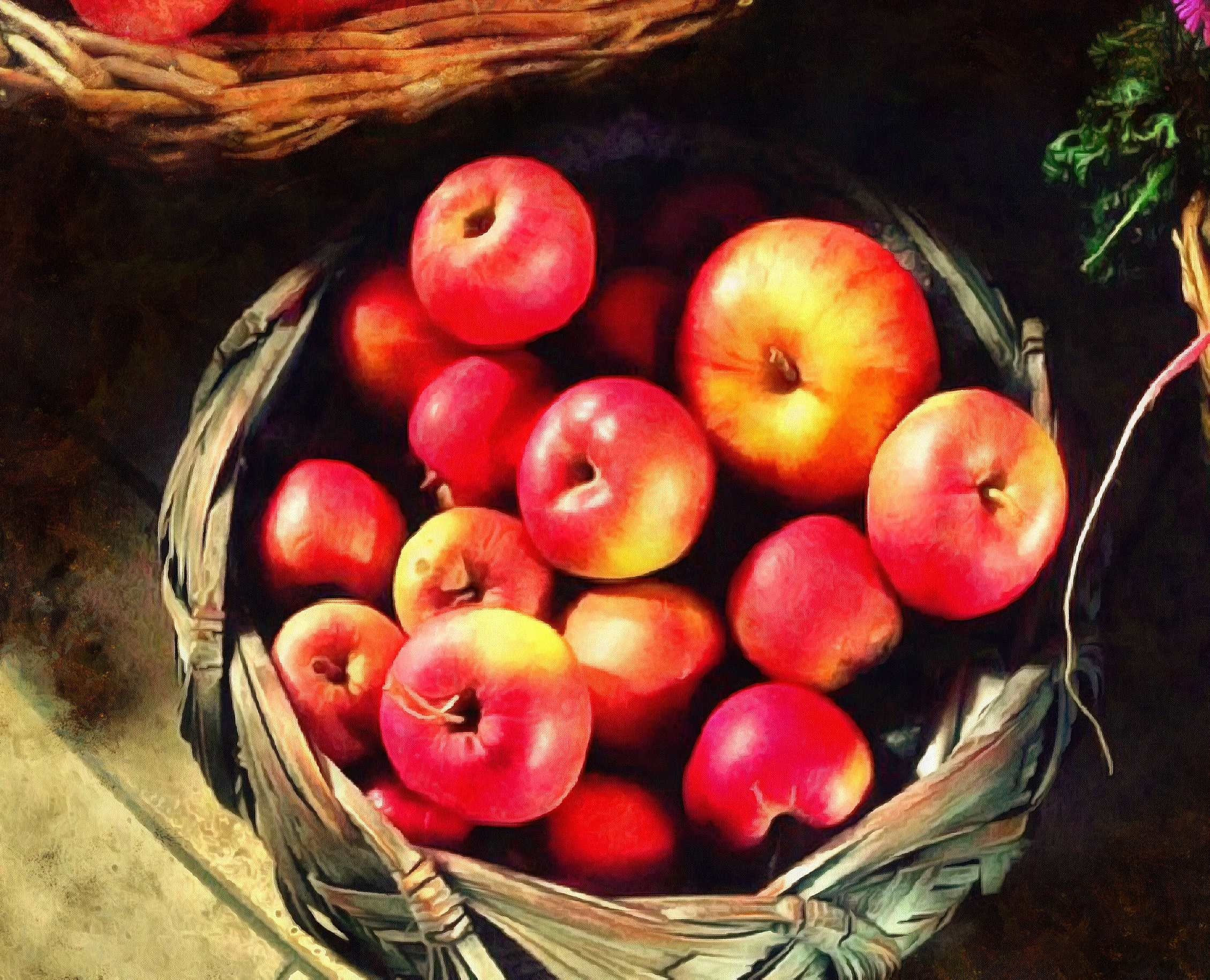 apples, holiday, fruit, wealth, summer, - thanksgiving, public domain images, stock free photos, free images, public domain photos, stock free images.