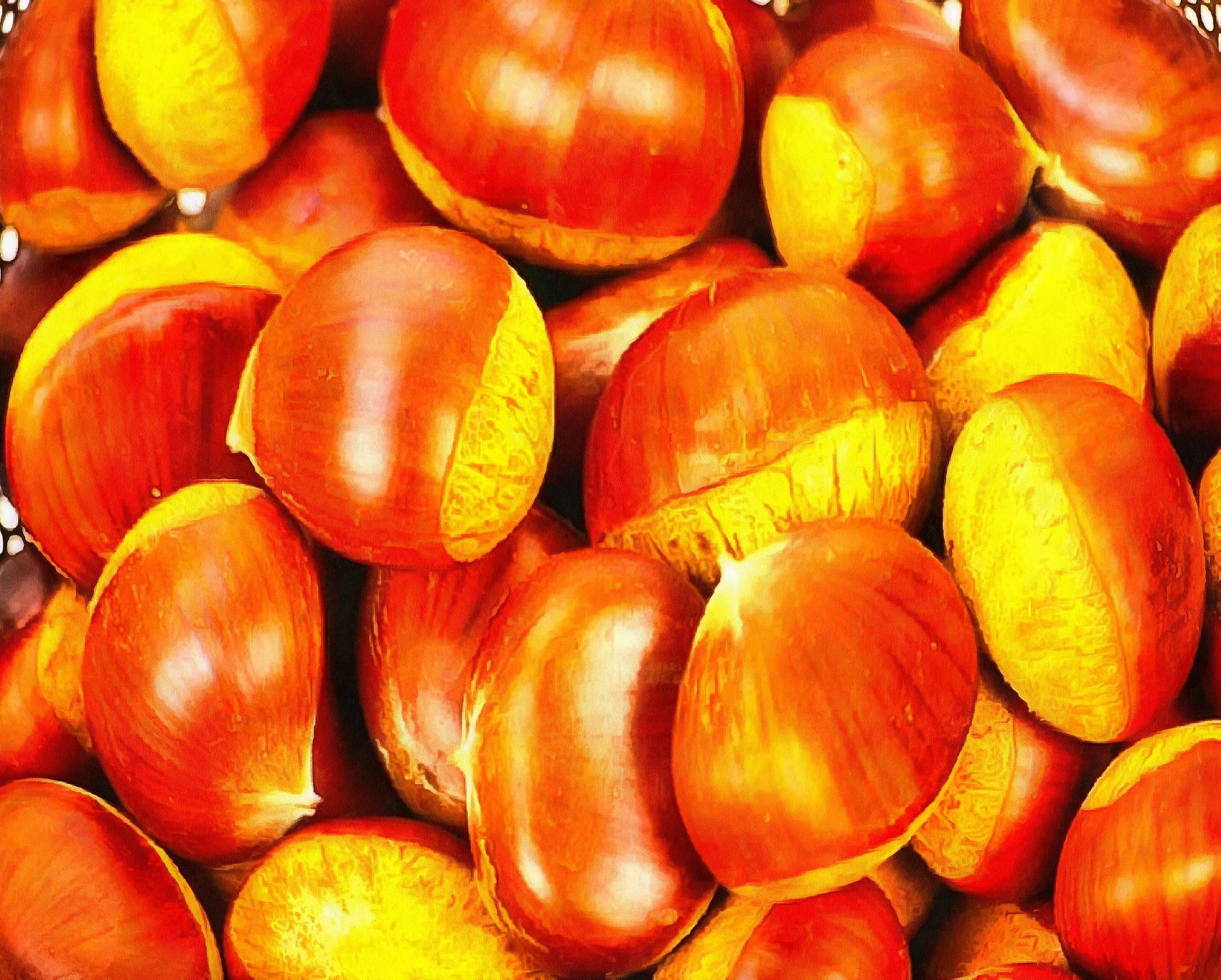 chestnut, sweet  chestnut, food, holiday, thanksgiving, feast, thank you,
