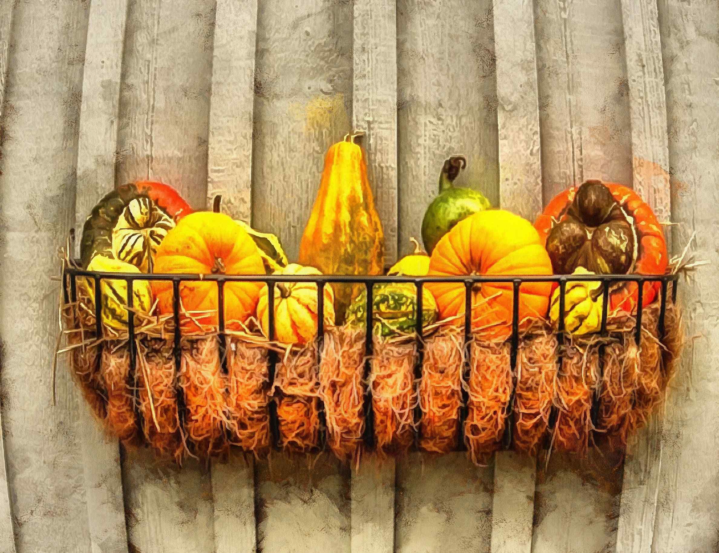 pumpkin, thanksgiving, vegetables, harvest, holiday, - thanksgiving, stock free image, public domain photos, free stock photo, download public domain images.