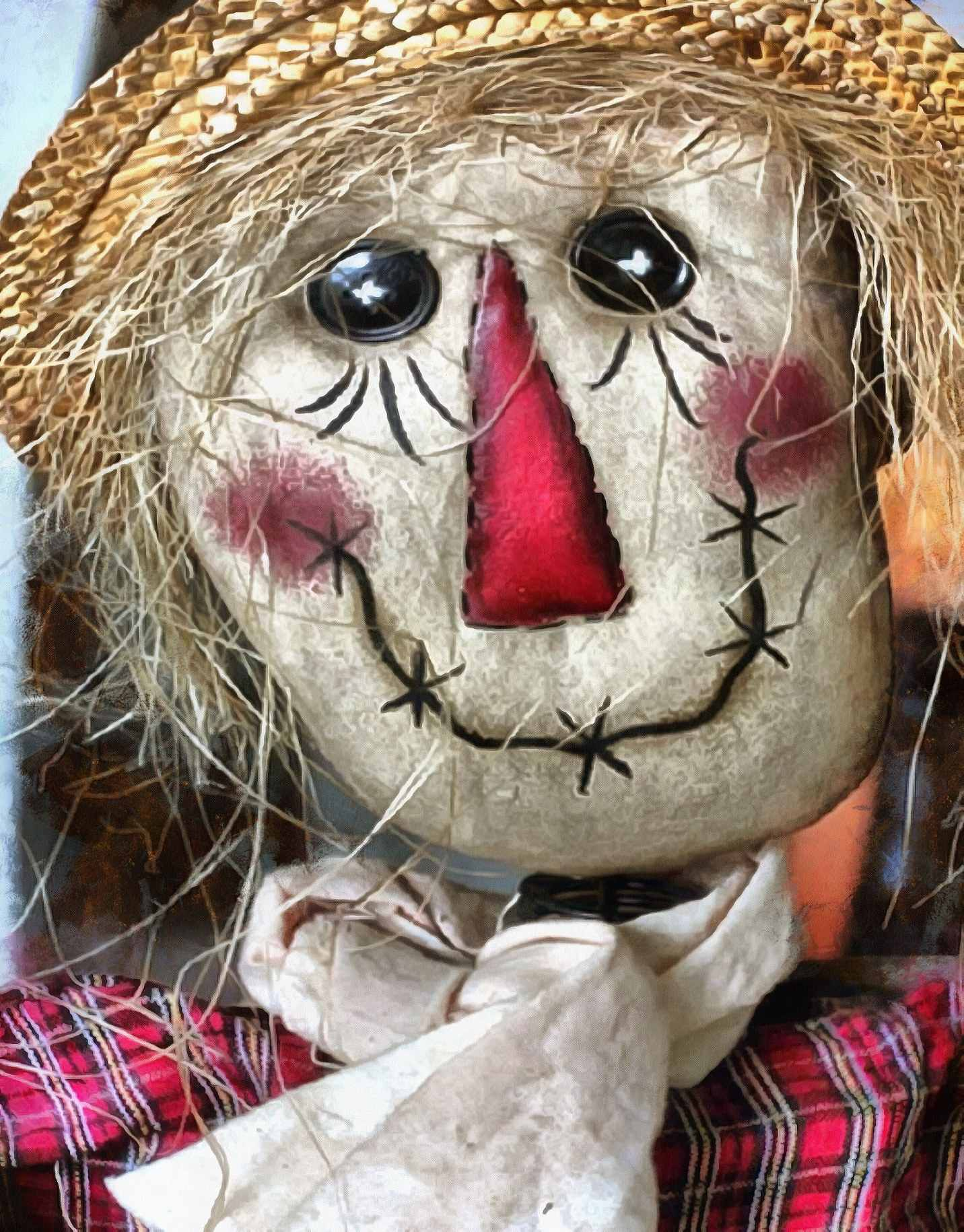 front face, doll, unhappy face, toy, scarecrow,