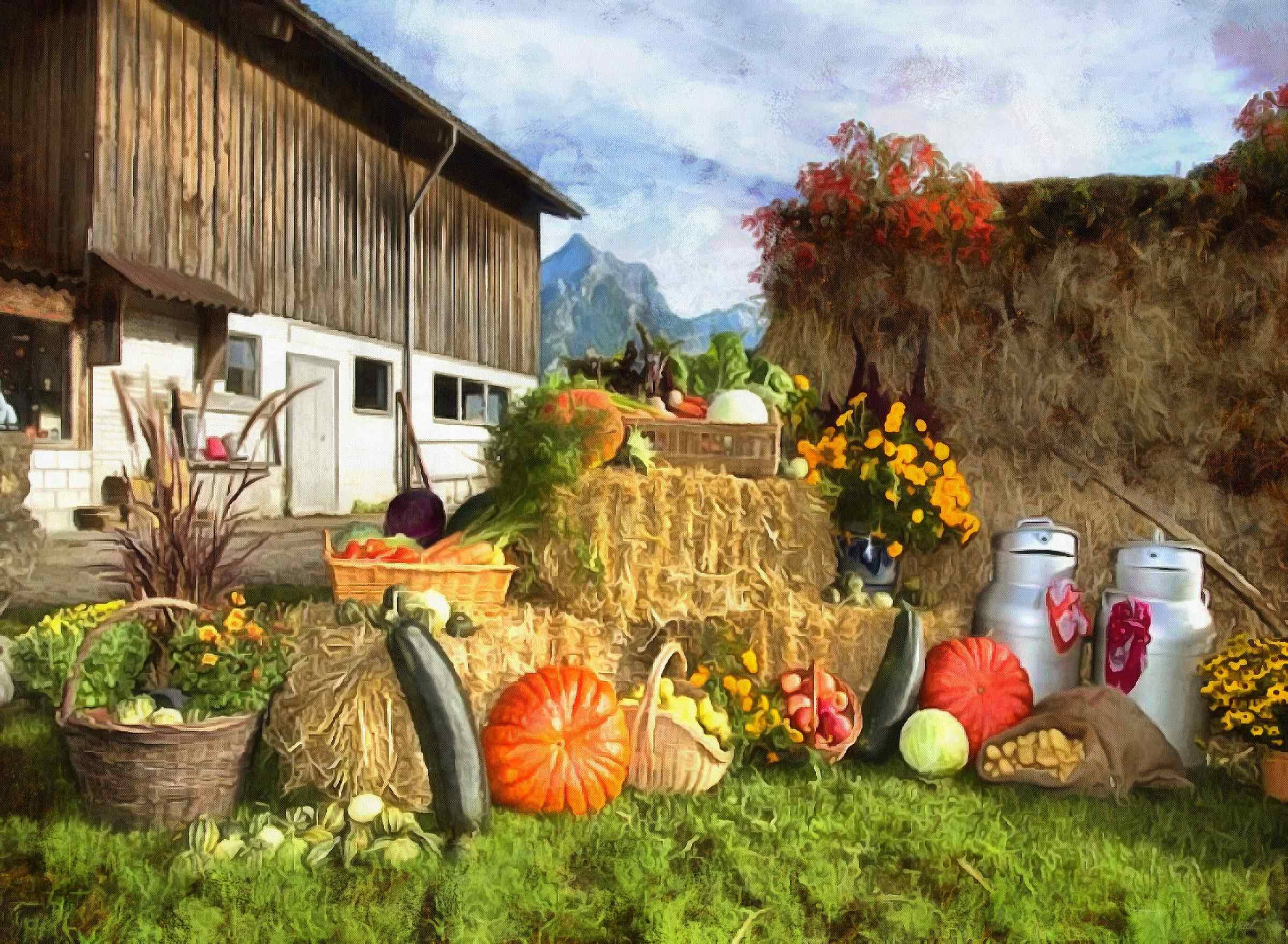 <br>harvest, farm, harvest, plenty of vegetables,