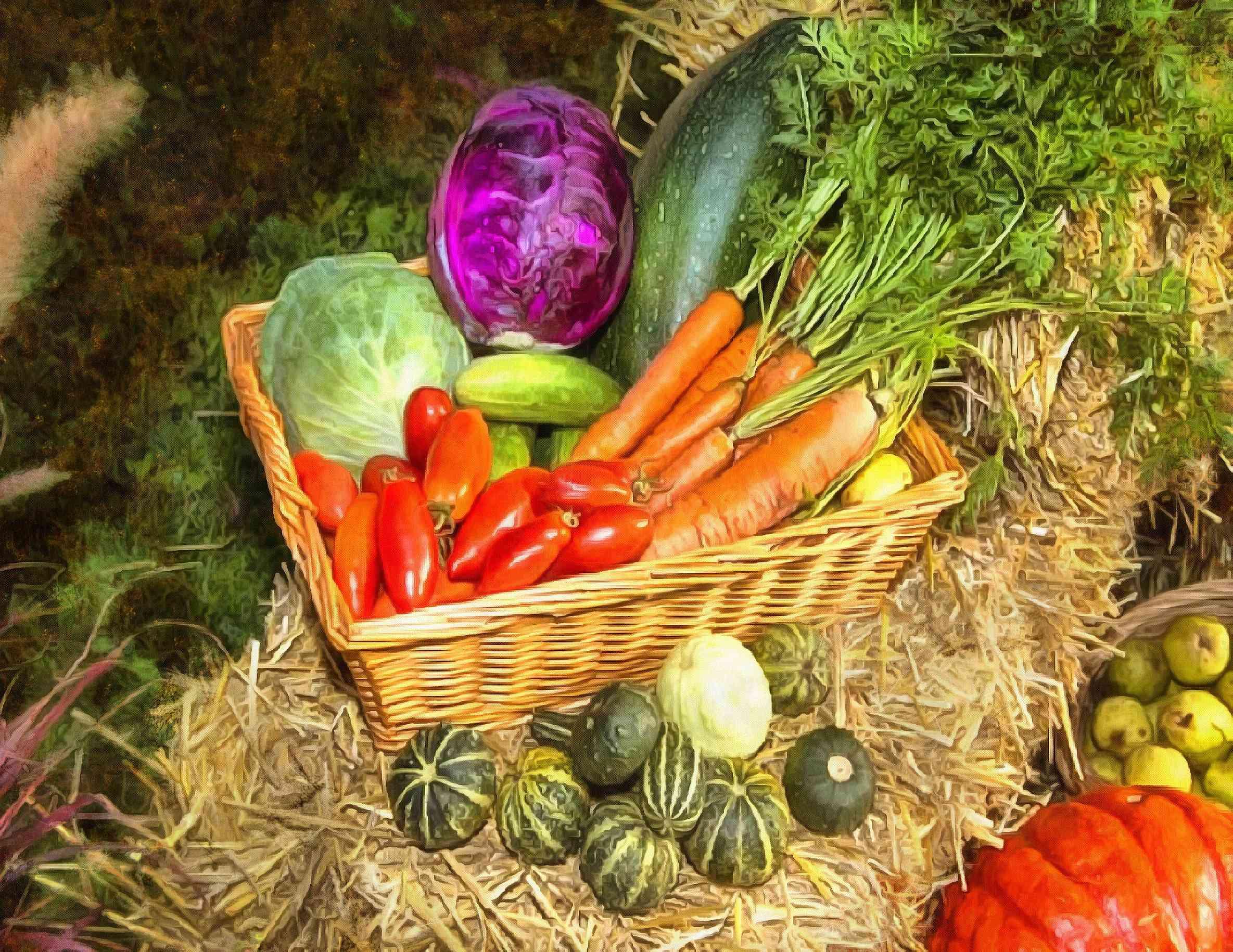 <br>Basket with vegetables, vegetables, carrots, harvest, straw,