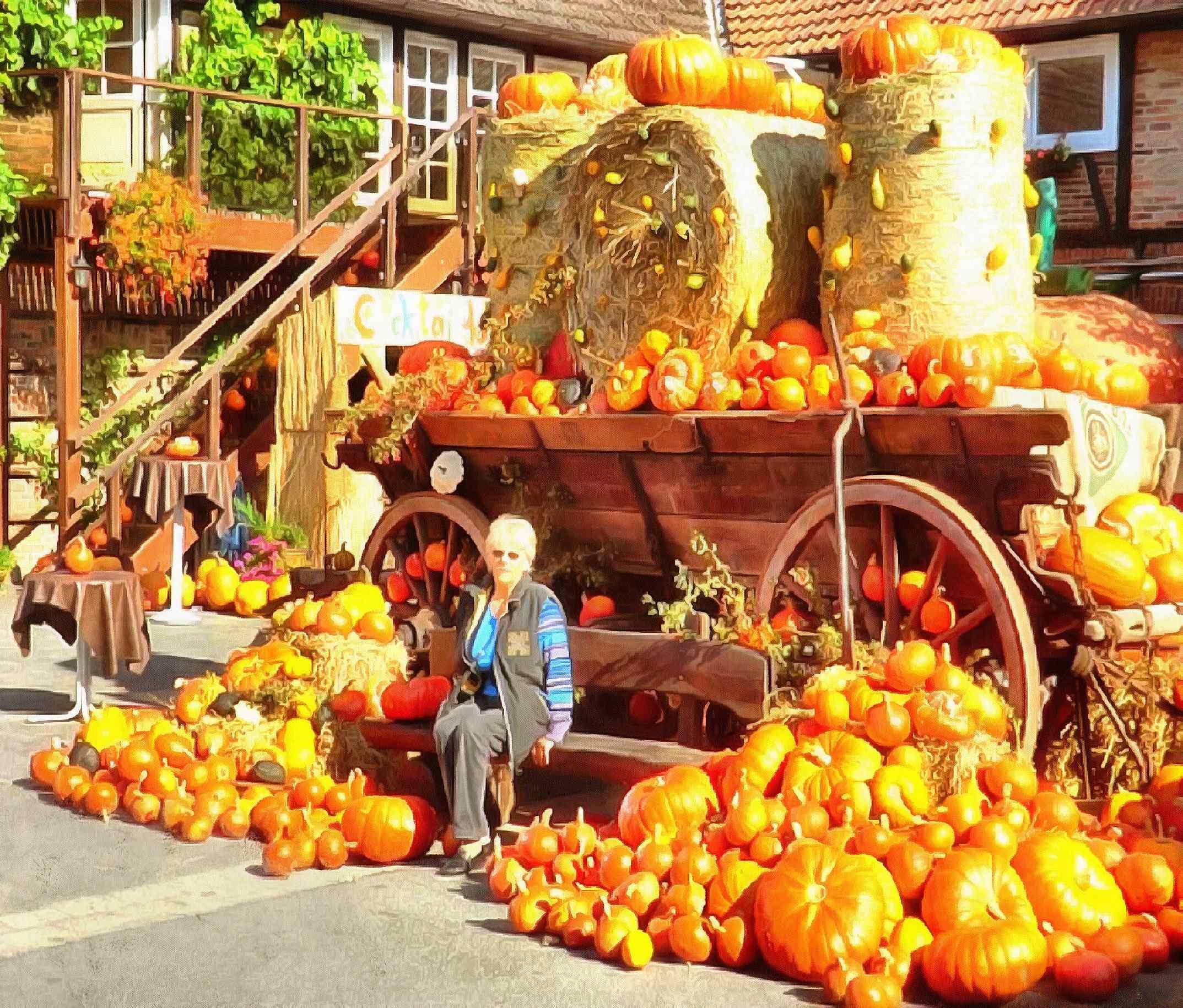 <br>many pumpkins, pumpkin festival, fair, pumpkin