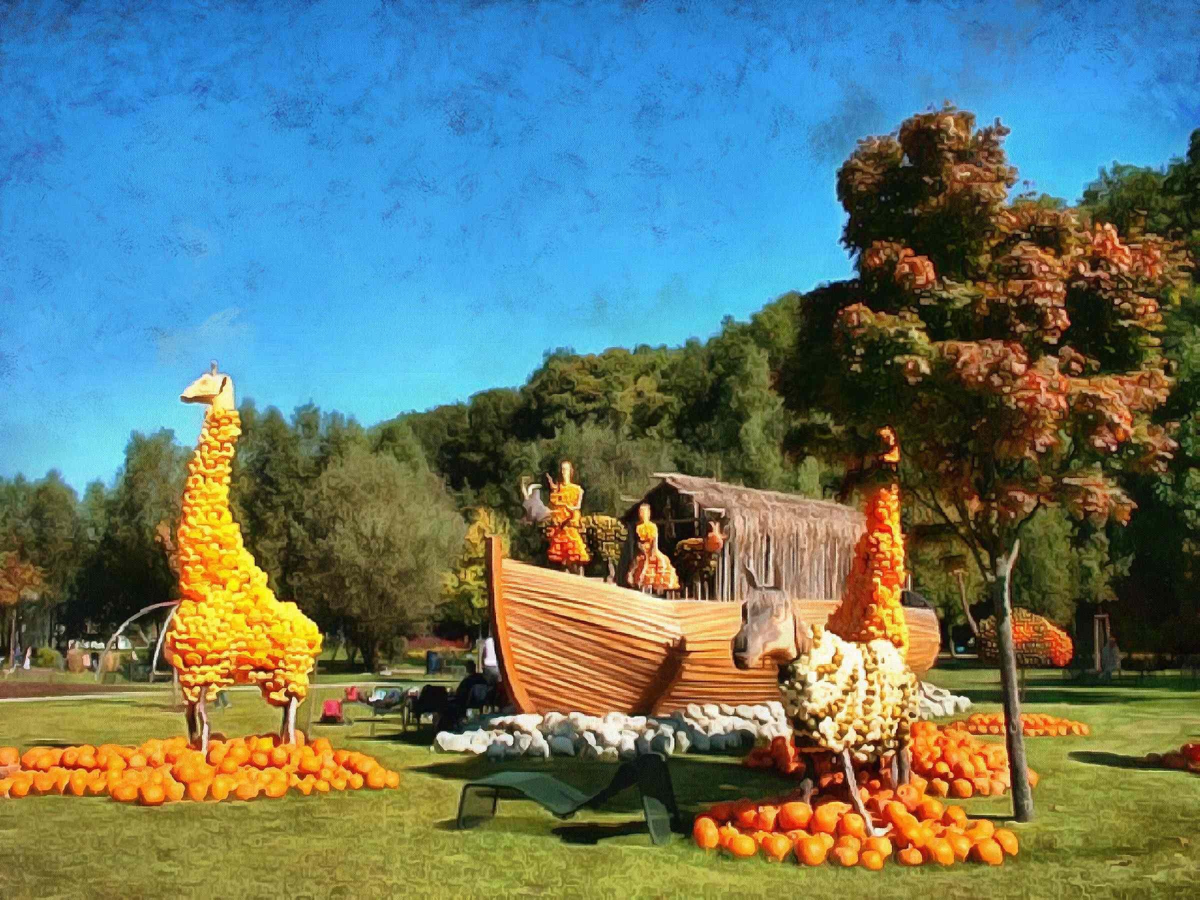 <br>Field pumpkins, harvest a lot of pumpkins,