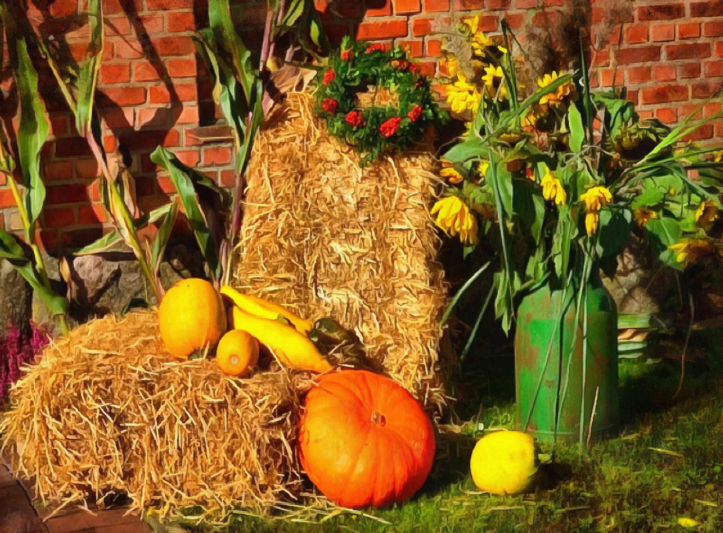 <br>hay, straw, pumpkins, harvest, harvesting,
