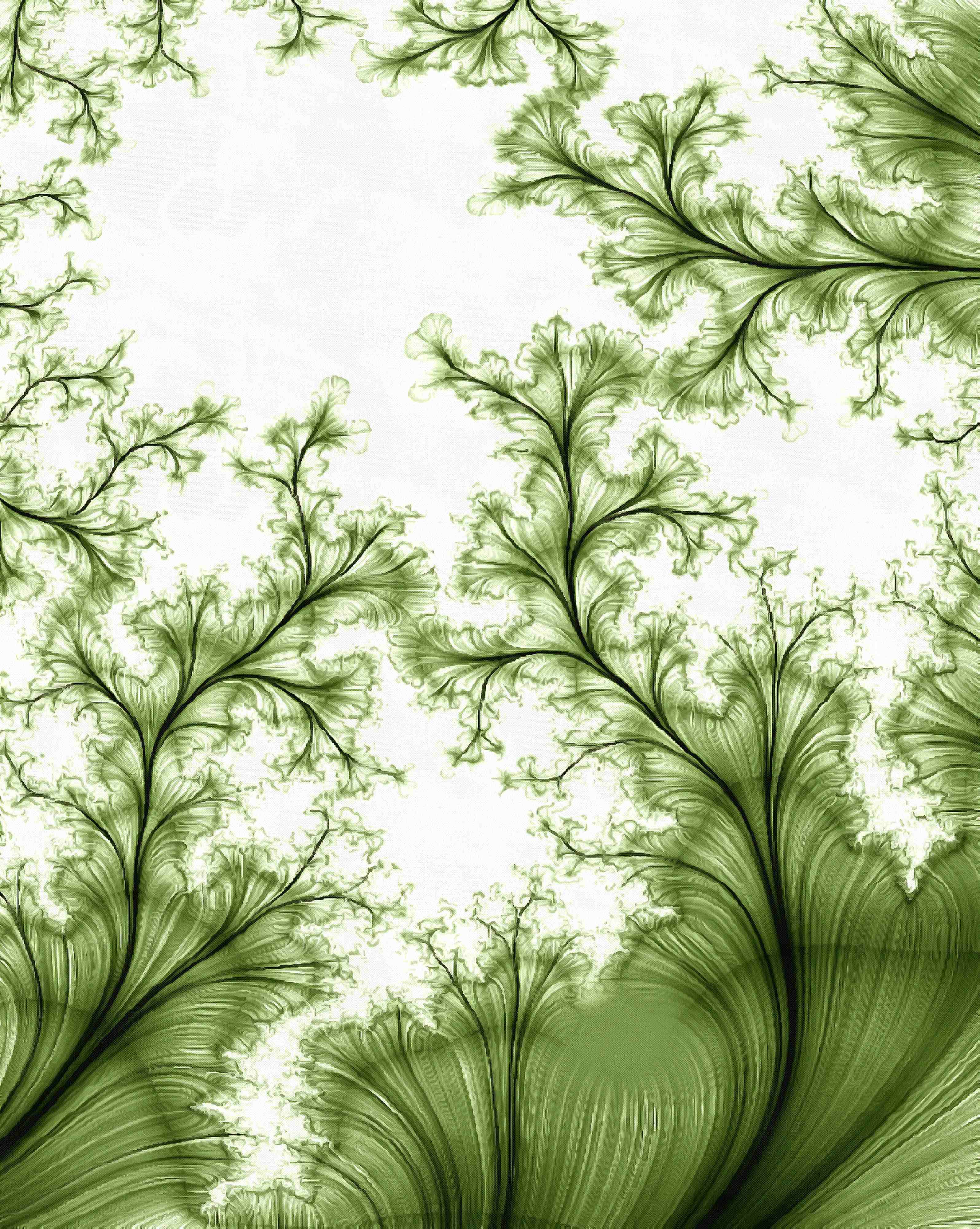 leaves,  curlicue abstract, flowers, fractal, graphic, line, fanned out, green , subjects stock free images, free illustrtions, free images, free image, public domain image, download free image