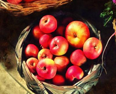 crop, apples, holiday, fruit, wealth, summer,