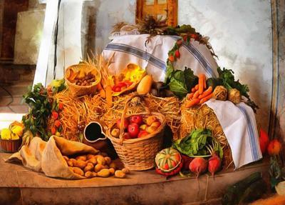 flowers, pumpkins, harvest, autumn