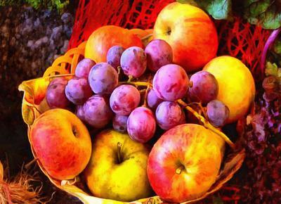 crop, apples, holiday, fruit, wealth, summer,