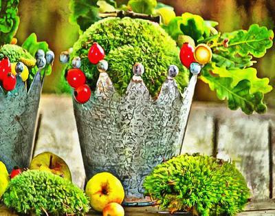 green, crown, leaves, apple