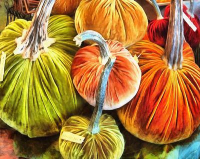 pumpkin Garbuz, vegetables, harvest,