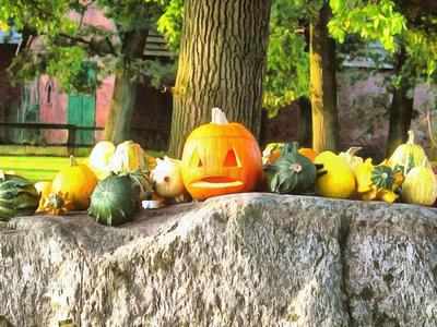 pumpkin, holiday, celebration, halloween, - halloween, free stock photos, public domain images, stock free images, download for free