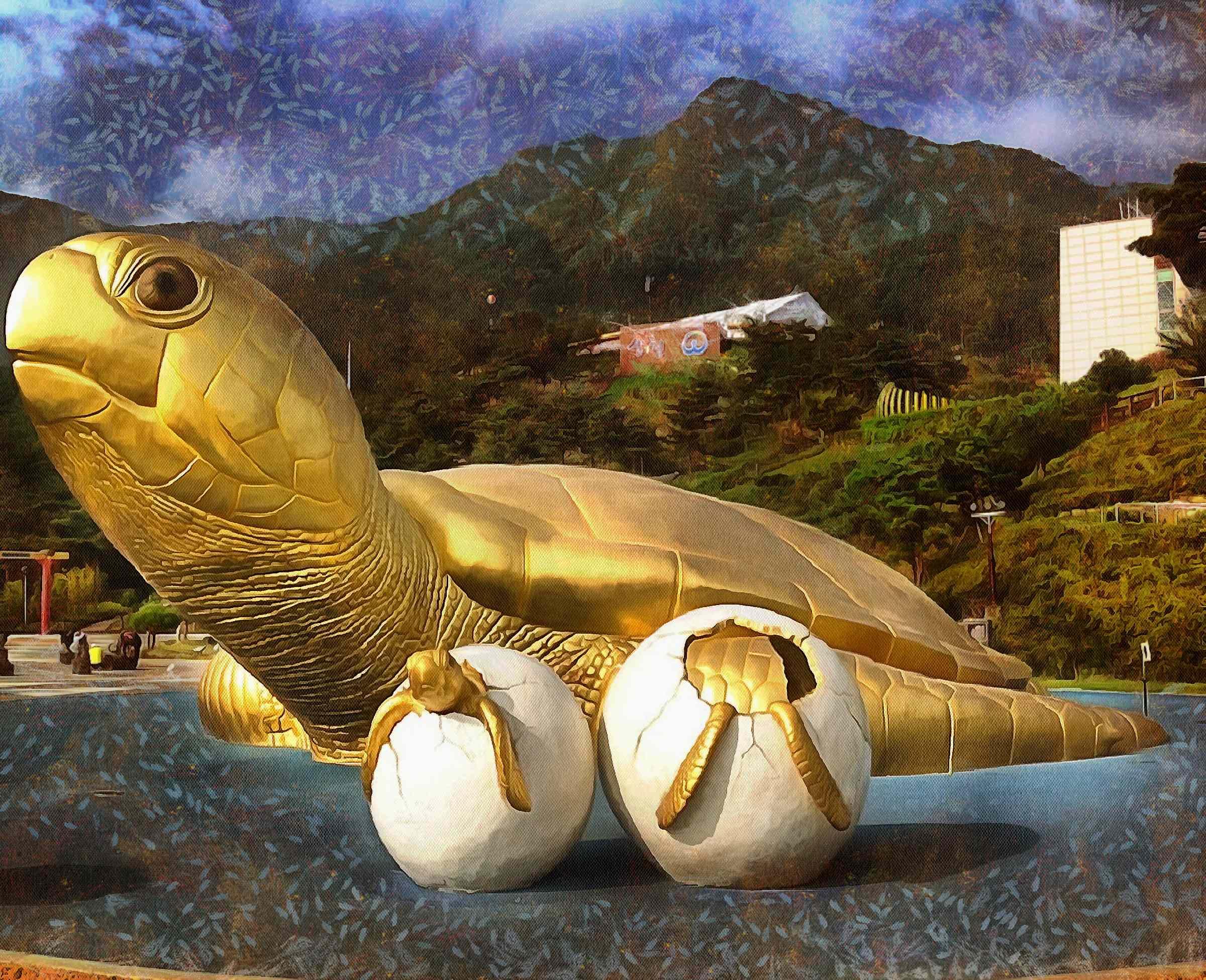 Turtle, tortoise,  loggerhead, terrapin, chelonian, leatherback, – Turtle free images, Tortoise free images, Turtle stock free images, Download free images turtles, turtle public domain images, tortoise public domain images!