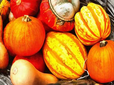pumpkin, thanksgiving, vegetables, harvest, holiday,