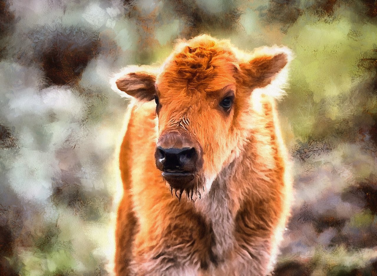 Animal Baby images, Free Stock Baby Animal Photos, Baby Animals, Baby Animal Photos, - Public Domain - Stock Free Images - Public domain!
