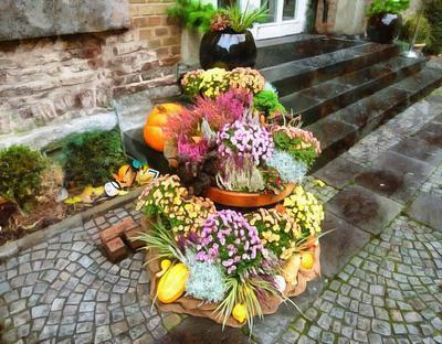 flowers, pumpkins, harvest, holiday,