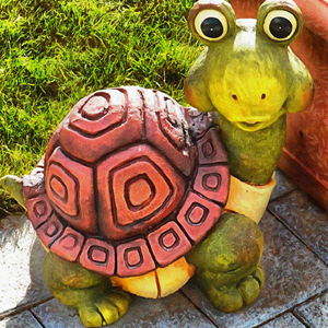 Tortoise and Turtle Stock Free